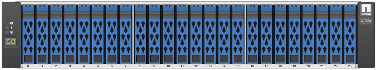 NetApp NS224 Front